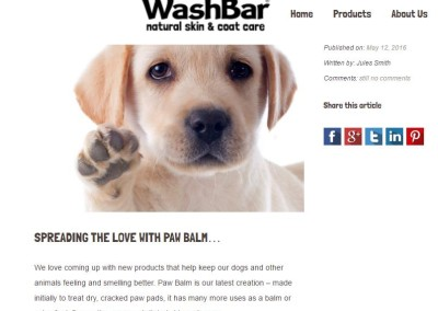WashBar blog page screenshot2
